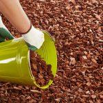 Les avantages de la pouzzolane et du paillage des plantes ?