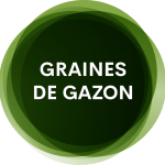 GRAINES-DE-GAZON
